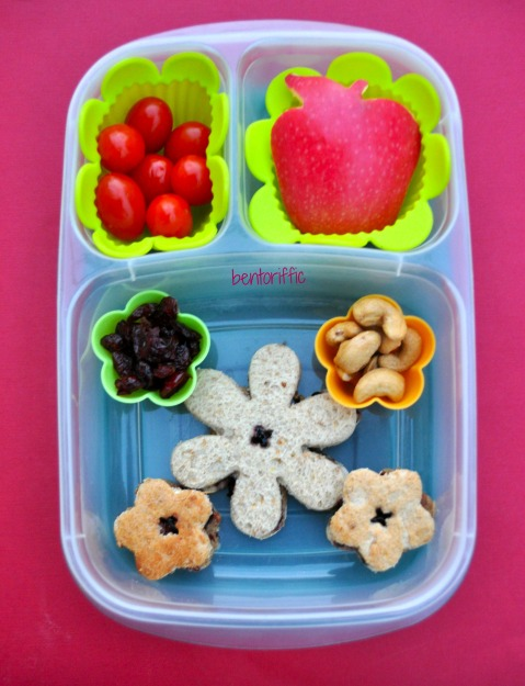 Bentoriffic- Flower power and apple bento