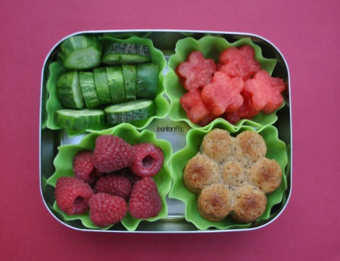 Bentoriffic- flower snack bento