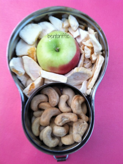 Freeze dried mangos and apple snack bento